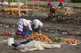 Rritet e thellohet pabarazia sociale, 2.000 miliarderët e botës kanë më shumë pasuri se 60% popullsisë së planetit