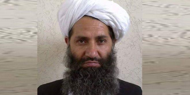 Udhëheqësi i talebanëve të Afganistanit kërkon bisedime me Amerikën për t'i dhënë fund luftës