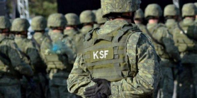 Forca e Sigurise
