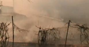 60 mijë njerëz evakuohen në Kaliforni dhe qindra-mijëra njerëz në SHBA mbesin pa energji për shkak të zjarrit në Kaliforni