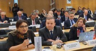 Një delegacion i Kuvendit të Kosovës po merr pjesë në takimet e Rrjetit Global Parlamentar të OECD-së