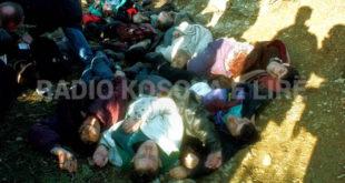 Gashi: Serbia nuk mund të amnistohet për krimet e kryera në Kosovë gjatë luftës së viteve 1998-1999