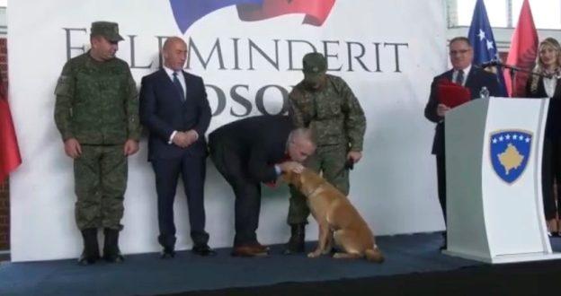 """Ilir Meta përkulet, përkëdhel dhe puth qenin """"hero"""" të FSK-së"""