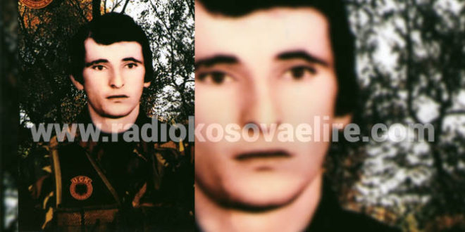 Nikë Sokol Hajdari (29.3.1960 - 9.1.1999)