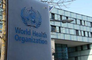 Organizata Botërore e Shëndetësisë i hedh poshtë kineze e virusi korona erdhi nga jashtë vendit