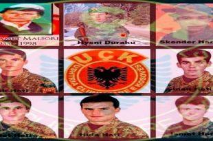 Sot në Krushë të Madhe përkujtohen tetë dëshmorët e kombit të rënë heroikisht 21 vite më parë malet e Pashtrikut