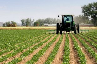 Shpërblimet dhe subvencionet në bujqësi vetëm për militantë partiakë që sigurojnë më shumë vota