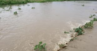 Smajl Latifi: Pas shiut të furishëm në Rahovec janë krijuarvërshime që kanë shkaktuar dëme në amvisëri dhe në bujqësi