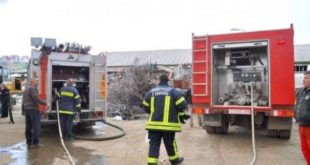 Zjarrfikësit